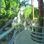 Grounds1 150x150 ARIZONA   Sheraton Desert Oasis Resort Scottsdale Phoenix